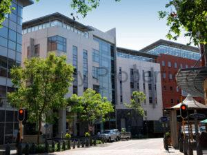 1,015 m² Office Space to Rent Melrose Arch 10 The High Street