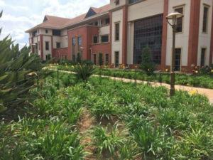746 m² Office Space to Rent Epson Downs Office Park